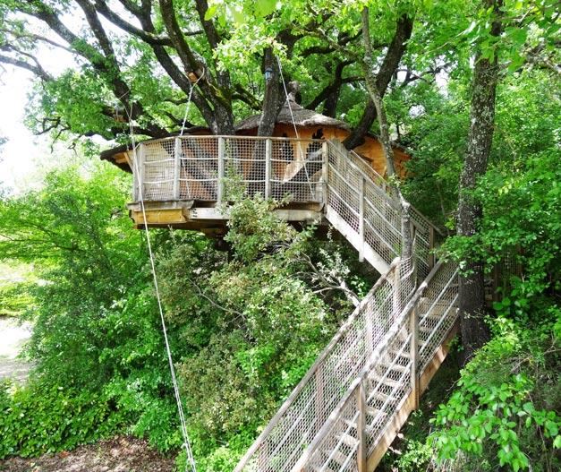location cabane arbres verdon