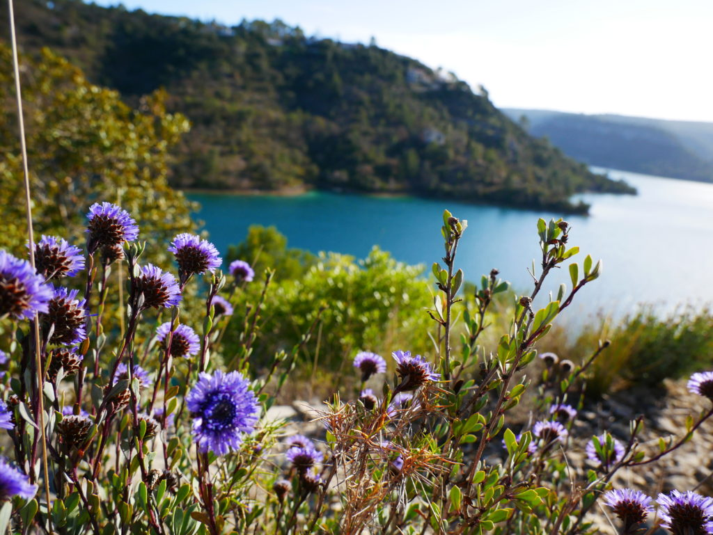 Lac Esparron proche camping la Beaume